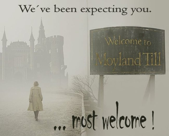 Welcome to Moyland
