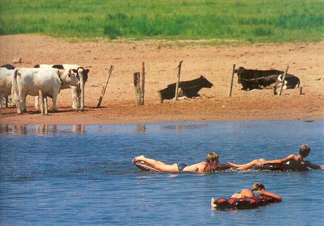 schwimmen im altrhein-33