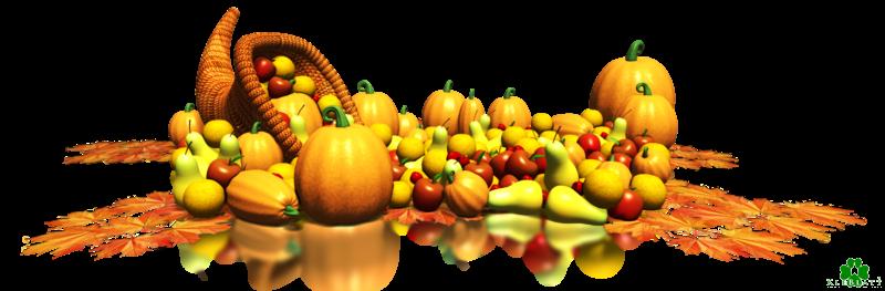 Vandaag is het Thanksgiving-feest