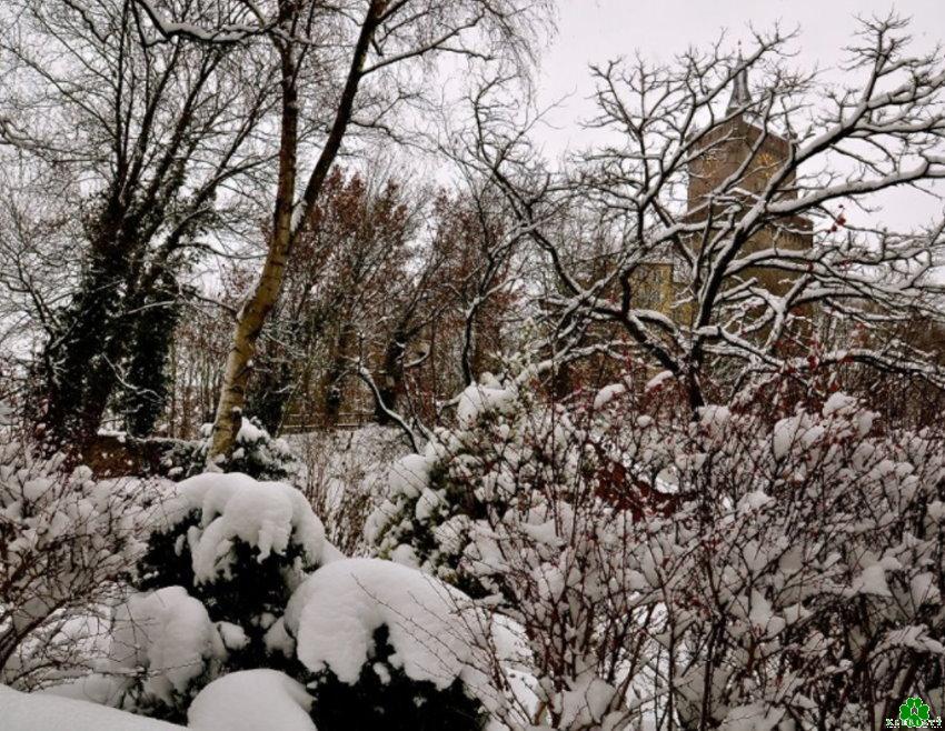 Die Winter-Burg von Kleve