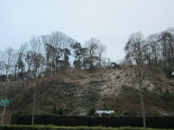 Tiergarten kleve wald