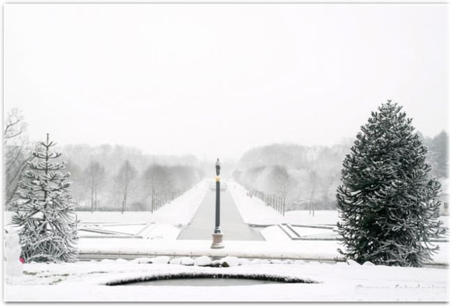 winterimpression1