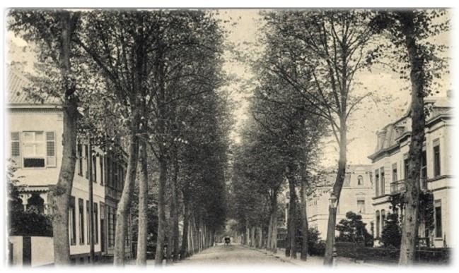 Die Tiergartenstraße in Kleve im Jahre 1910