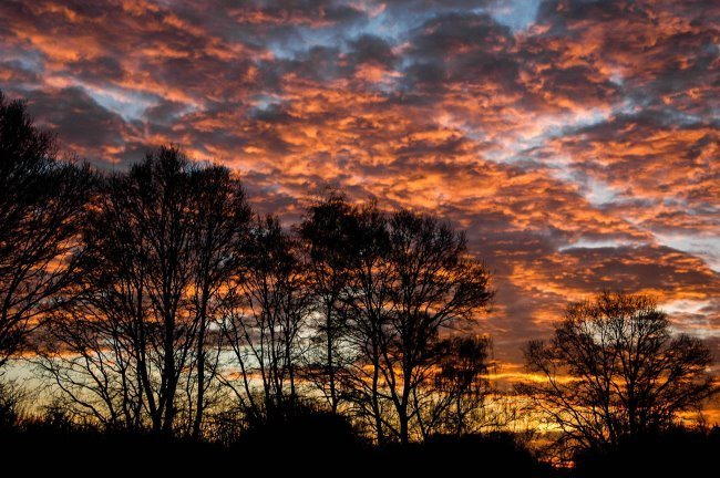 Morgenrot in den Niederungen