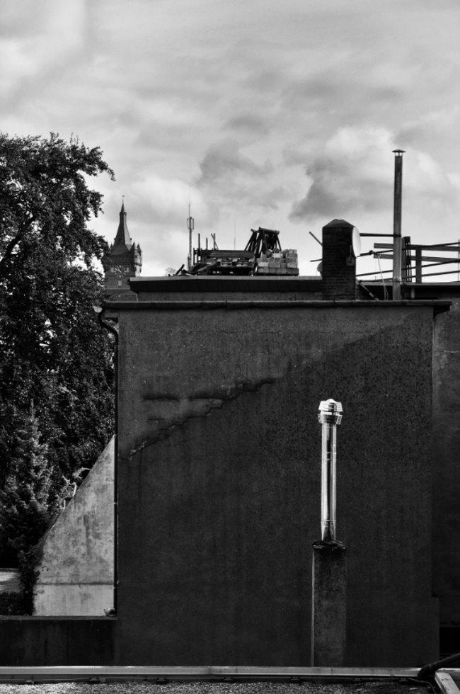 Ärgert Dich auch die schlechte Sicht auf die Schwanenburg?