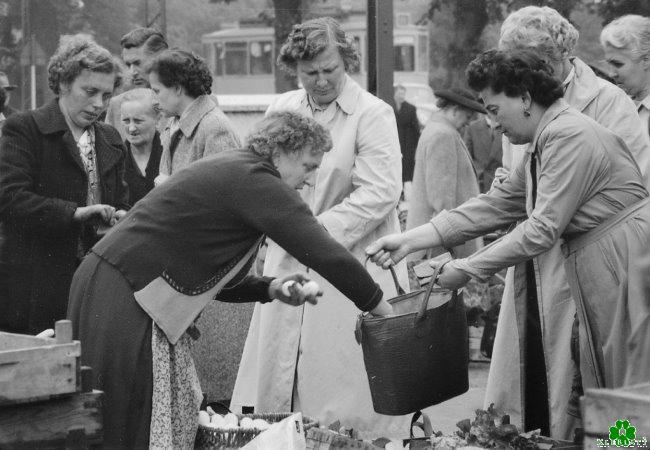 Gab es mal die Besten bei der Eierfrau vom Markt an der Linde?