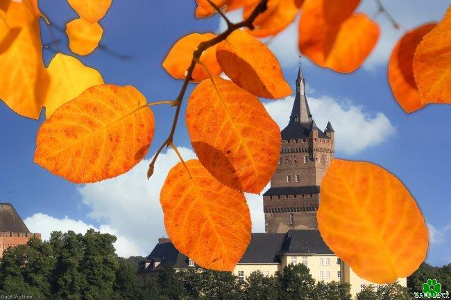 De kleurrijke herfst voor de Schwanenburg