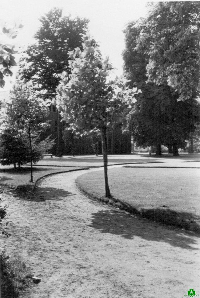Bist Du hier schon 1956 spaziert?