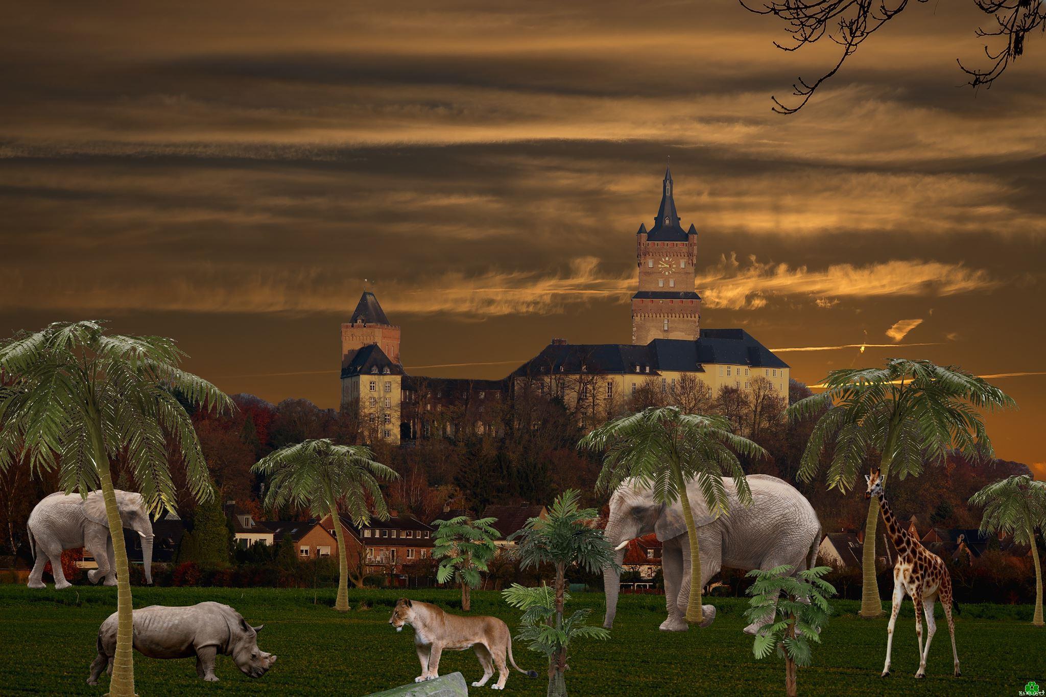 Elefanten, Nashörner und Giraffen in Kleve