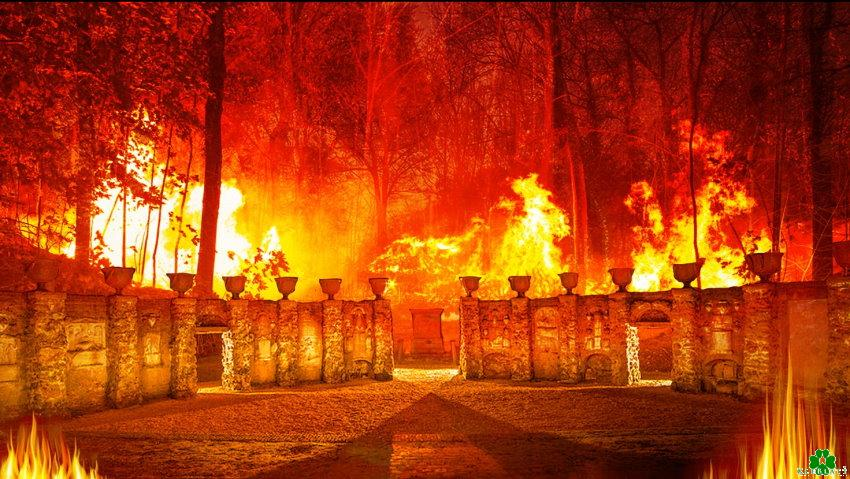 Waldbrand am Prinz-Moritz-Grab
