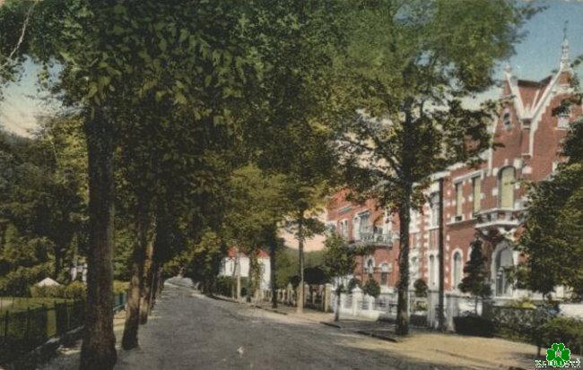 Wist je dat Tiergartenstrasse ooit een laan was?